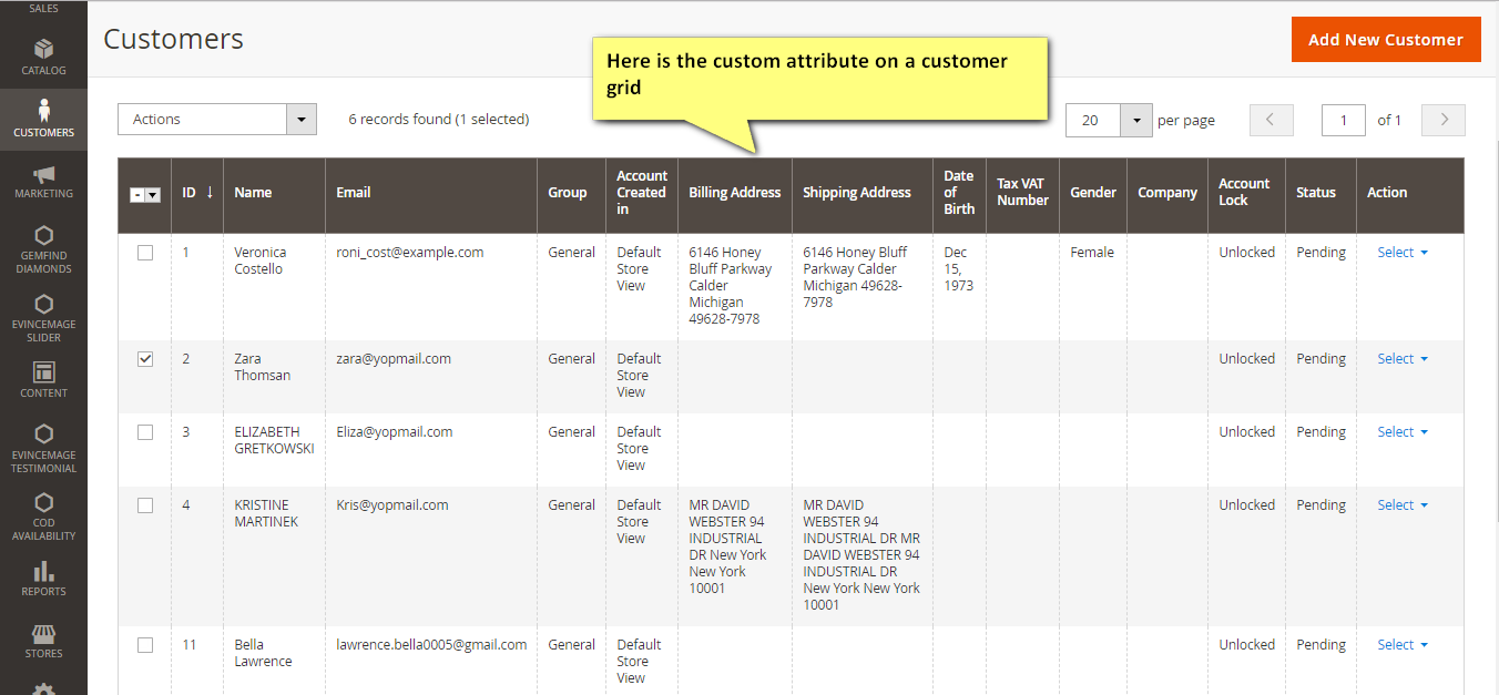 custom attribute in the customer grid