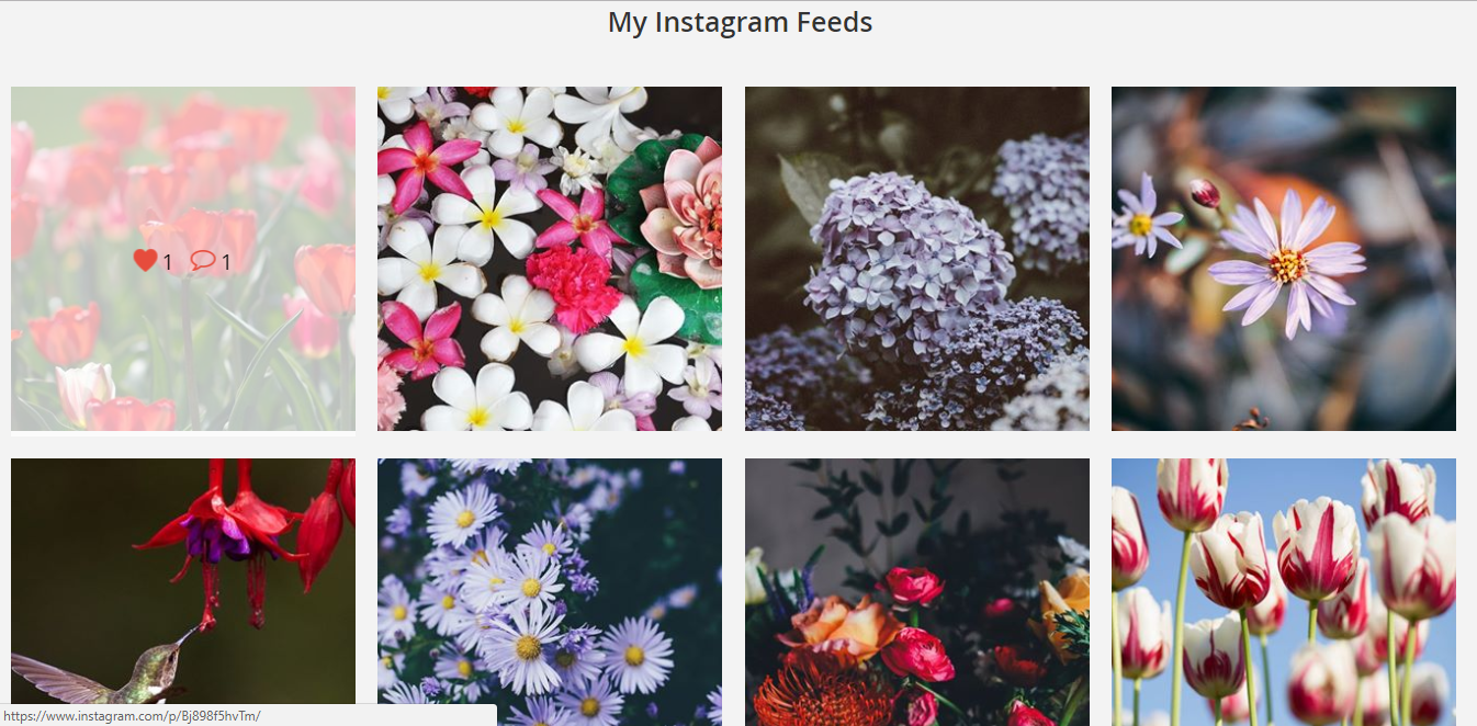 Instagram Feeds Widget Result on Frontend